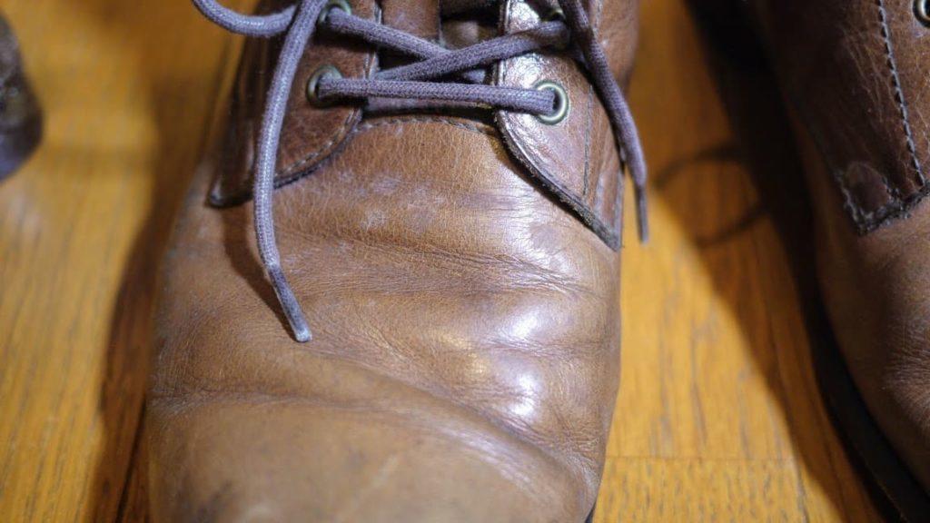 カビが生えた革靴の甲