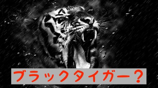ブラックタイガーのイメージ