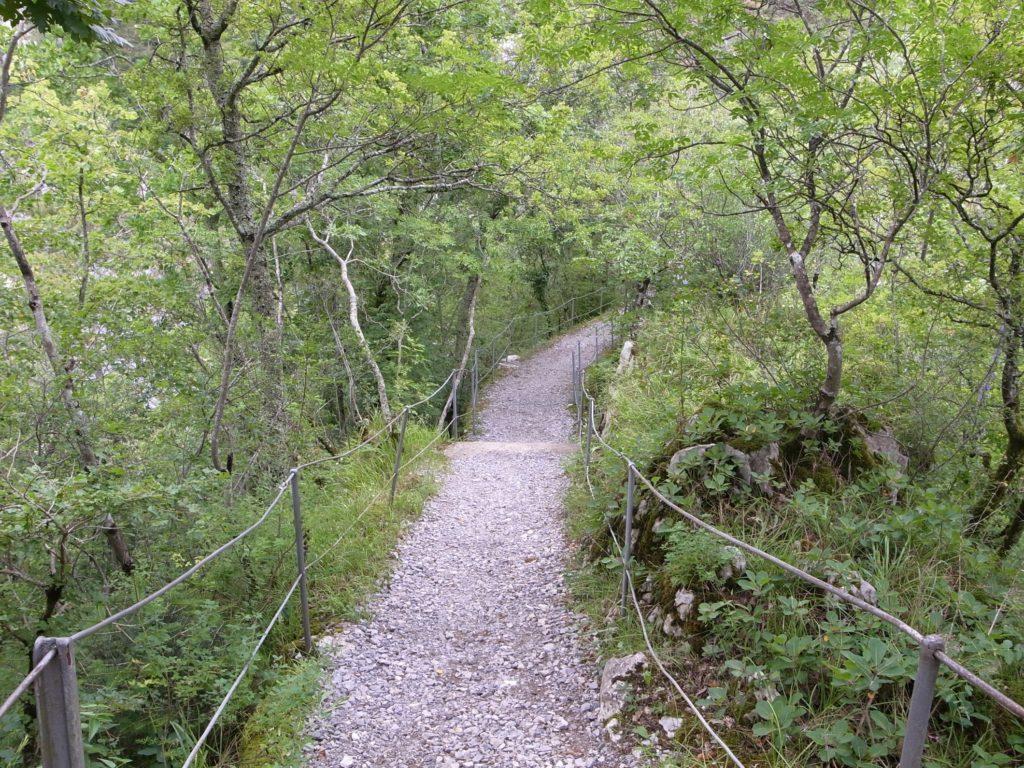シュコツィヤンの山道