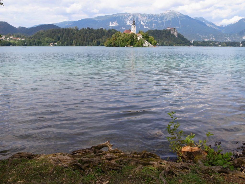 ブレッド湖の水面