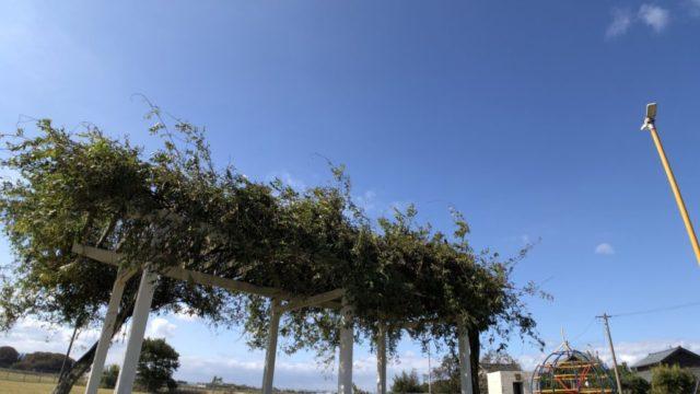 超広角で撮影した空